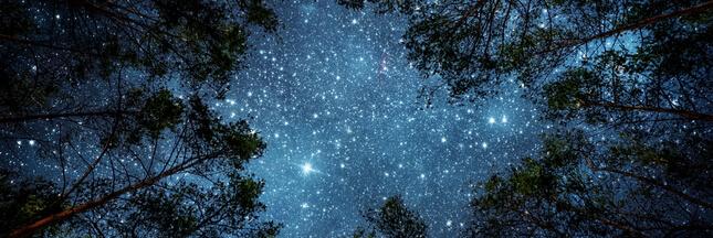 Pluie d'étoiles filantes, éclipse de lune…Que voir dans le ciel en janvier?