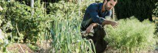 Sélection livre : Au coeur de la permaculture