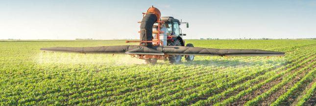 Pesticides: dans l'Yonne, une protection obligatoire pour les personnes 'vulnérables'