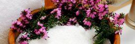 Détox: découvrez le sel d'Epsom!