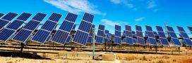 L'Égypte va construire le plus grand parc solaire du monde