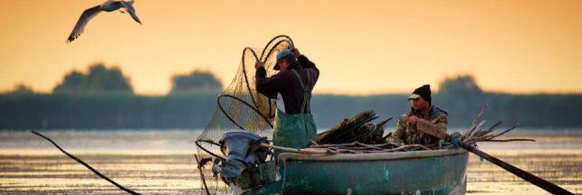 La pêche artisanale aussi dévastatrice que la pêche industrielle