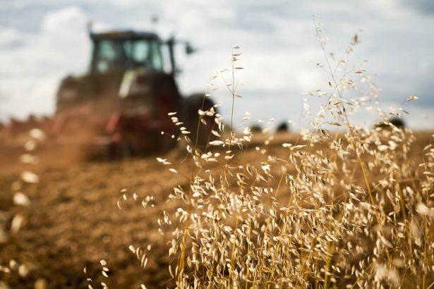 agriculture, combat greenpeace
