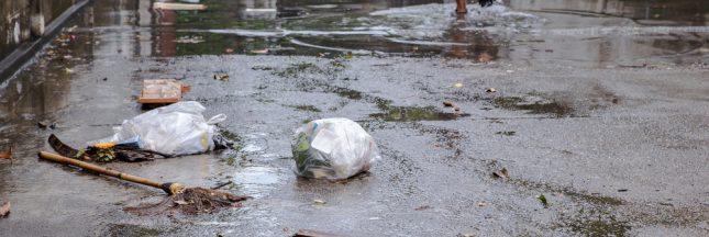Crue de la Seine: les déchets s'accumulent