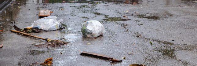 Crue de la Seine : les déchets s'accumulent