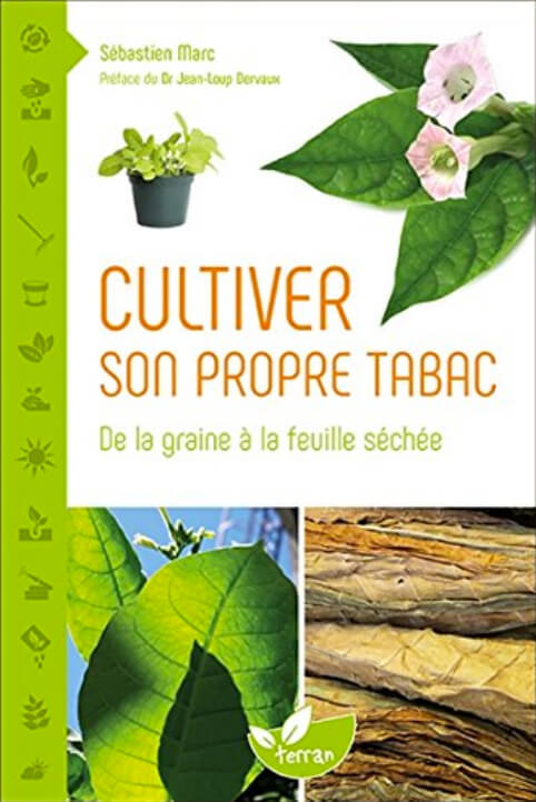 cultiver tabac