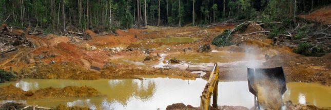 Pollution: de nombreux enfants guyanais contaminés au plomb