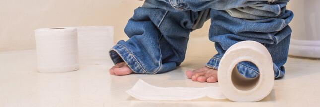 Êtes-vous prêts pour le papier toilette lavable?