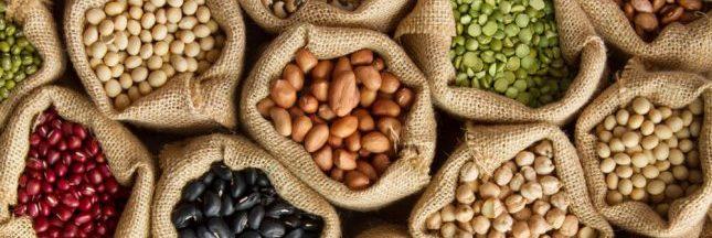 Alimentation : le boom des protéines végétales