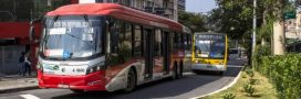 En 2025, un bus sur deux sur la planète sera électrique