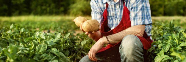 En solidarité avec les agriculteurs, des communes rurales « se mettent en vente »