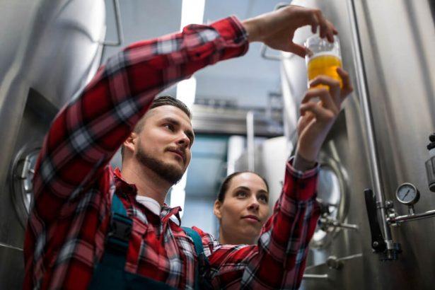bière, label, profession brasseur