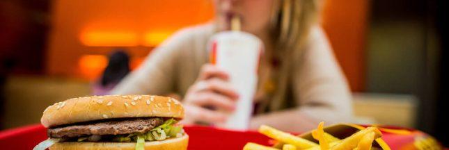 Une ZAD sur l'île d'Oléron contre l'installation d'un fast-food