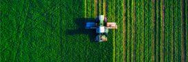 Recul de la biodiversité agricole: une association tire la sonnette d'alarme