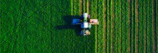 Recul de la biodiversité agricole : une association tire la sonnette d'alarme