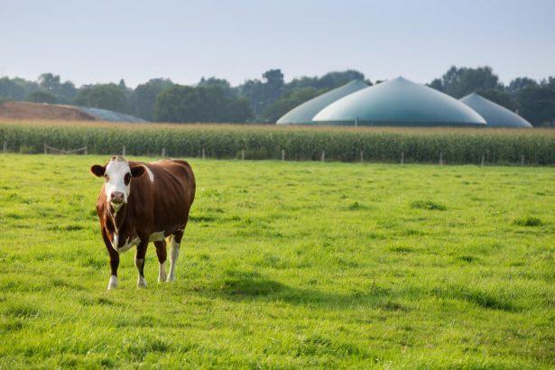 biogaz, méthane