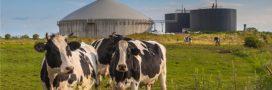 Plan de libération des énergies renouvelables: développer la filière méthane