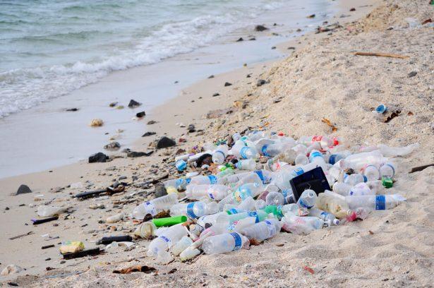 L 39 eau en bouteille contamin e par des particules de plastique - Eau en bouteille vs eau du robinet ...