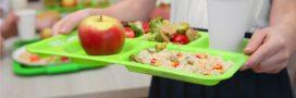 Gironde: des barquettes 100% végétales vont équiper les cantines