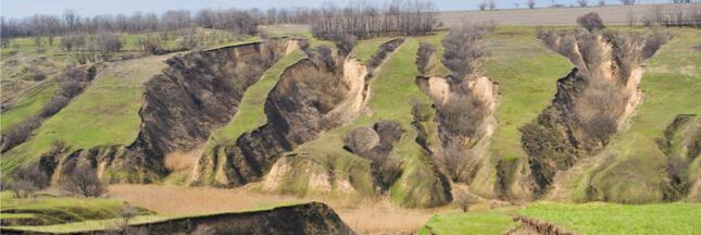 Un rapport alarmant dresse l'état des lieux des sols