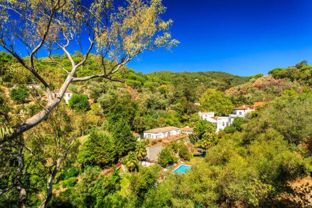 forêt Portugal, Algarve