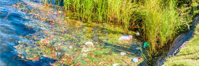 La concentration de plastique dans les cours d'eau serait sous-estimée