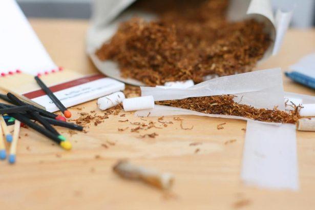 faire pousser tabac