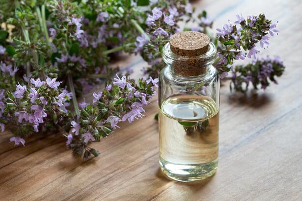 renforcer système immunitaire plantes