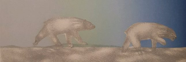 Sélection livre: La divergence des icebergs, un conte poétique sur le réchauffement climatique