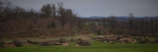 Massacre à la tronçonneuse pour la fibre en Corrèze