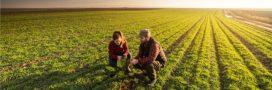 Ver de terre production: des formations à l'agroécologie pour les agriculteurs