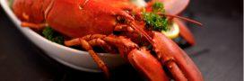 Crustacés: une empreinte carbone très importante