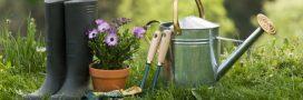 7 conseils pour un jardin bio naturel au printemps!