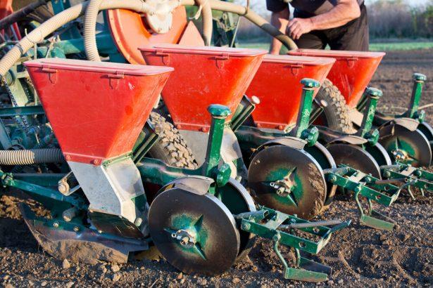 semences paysannes bio