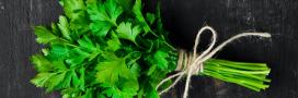 3 recettes bio très faciles à réaliser avec du persil