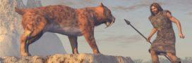 La disparition des mammifères est liée aux déplacements des hommes