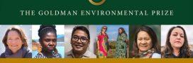 Prix Goldman 2018: découvrez les Héros de l'Environnement