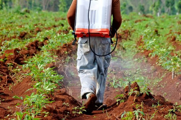 microbes remplacer pesticides