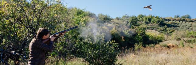 En France, les lobbys de la chasse ne désarment pas et la biodiversité en prend un coup