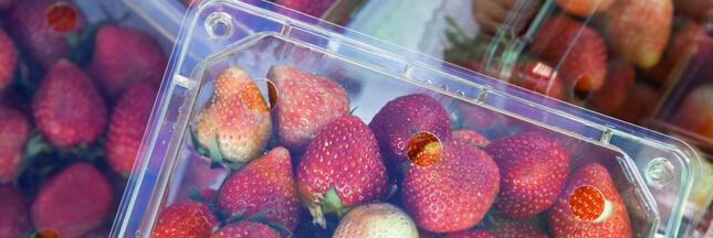 Plastique: la lutte contre les emballages à usage unique s'intensifie autour du monde !