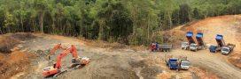 Top 10 des combats environnementaux menés autour de la planète