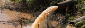 L'agriculture met en danger l'eau du monde entier