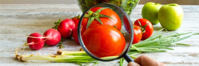 Pourquoi les pesticides perturbent le métabolisme