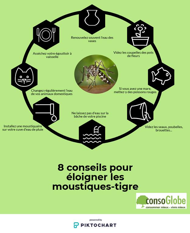 moustiques tigre