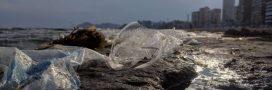 Appel du WWF: Sauvons la Méditerranée du plastique!