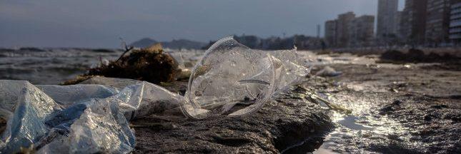 Appel du WWF : Sauvons la Méditerranée du plastique !