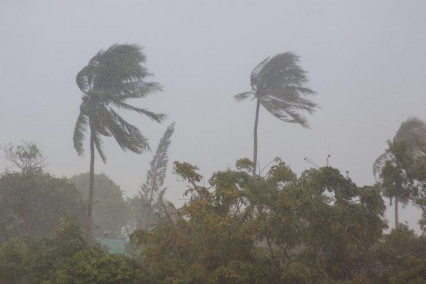 aléas climatiques