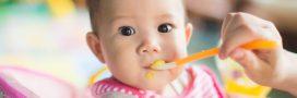 Sélection livre – Mes petites recettes magiques pour mon bébé