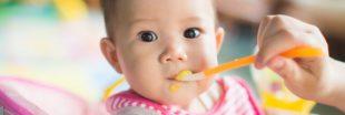 Sélection livre - Mes petites recettes magiques pour mon bébé