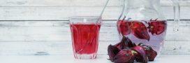 Le jus de bissap, un nectar africain aux multiples vertus